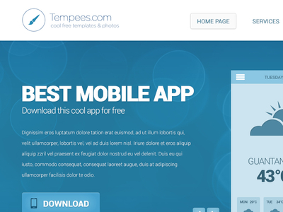 Free Web Design with Subpage