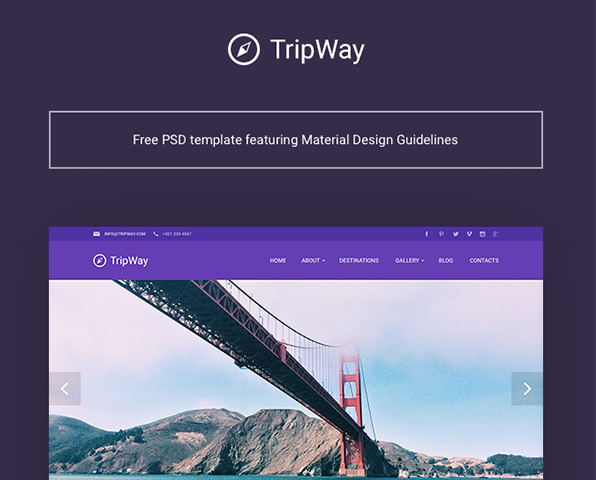TripWay: Travel website PSD Template — download free ui kits by PixelBuddha
